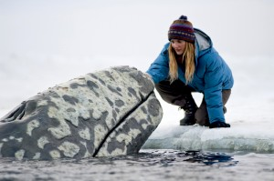 Big Miracle is released by Universal Pictures on 10th February.
