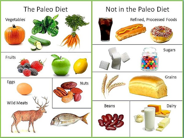 paleo-diet-what-to-eat