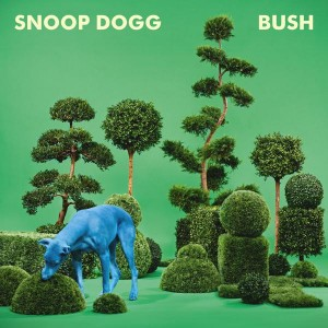 Bush_Album_Cover